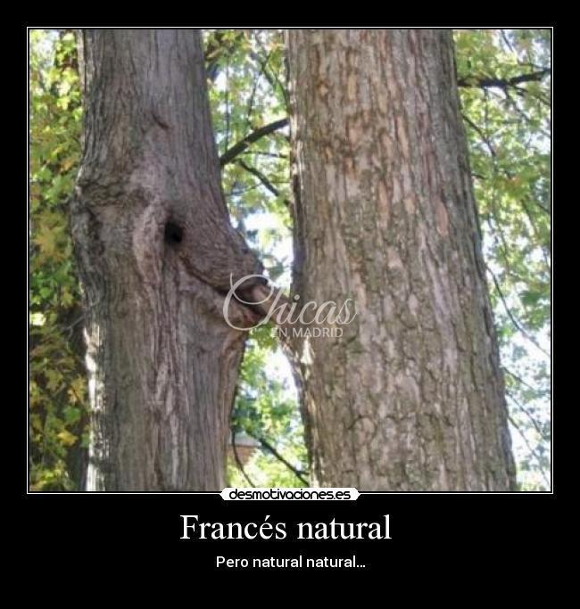 francés natural, masaje con final feliz.